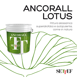 ancorall lotus settef